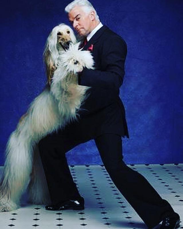 john o'hurley dancing dog